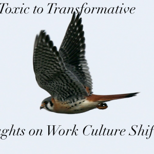 From Toxic To Transformative. Thoughts On Work Culture Shifts.